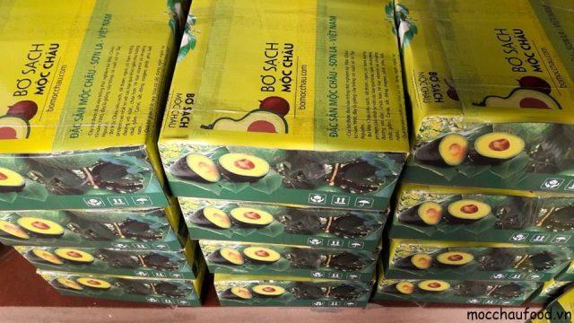 Bơ Mộc Châu béo ngậy, dinh dưỡng hàng đầu cao nguyên Mộc Châu - 5