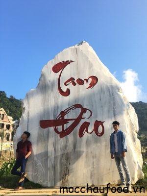 Check in Tam Đảo