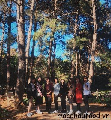 8 chúng tớ và review Mộc Châu truyền kì chuyện