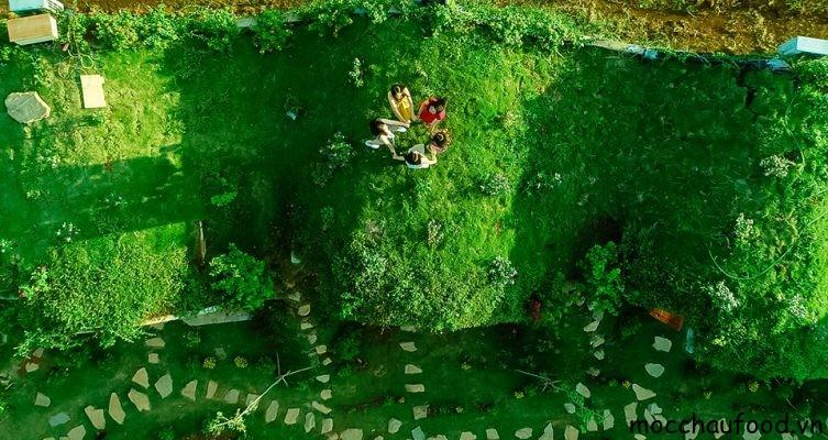 Điểm cộng lớn nhất khi đến với Moc Chau Hobbiton là khoảng sân xanh ngát